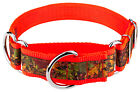 Country Brook Petz® 1 1/2In Southern Forest Camo Exclusive Martingale Dog Collar