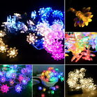 50LED Solar Powered String Lights 侵权 Flower Solar Fairy LED String Lights GIF