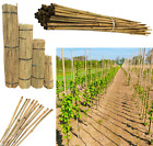 100 x Strong Professional Garden Bamboo Canes Plant Support 3ft 4ft 5ft 6ft 7ft