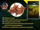 Catechu Bark Similar To Indian Almond Leaves For Betta And Fresh Water Fish