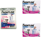 Frontline Spot On Flea Large Dogs 20kg - 40kg 1 - 3 - 6 pipettes