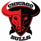 Chicago Bulls sticker for skateboard luggage laptop tumblers  (a) on eBay