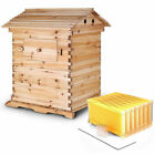 7Pcs Upgraded Auto Run Bee Comb Hive Frames or Wooden Beekeeping Beehive House