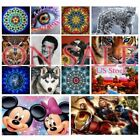 US Diamond Painting 5D Full Drill Kits Embroidery Crafts Arts Wall Decors