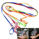Bird Parrot Leash Adjustable Harness Outdoor Training Rope Anti Bite Flying Band