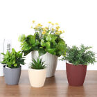 Bonsai Automatic Water Imitation Rattan Flower Pot Plastic Plant Container