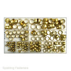 Metric Brass Compression Olives - Assorted Box & Individual Sizes Available