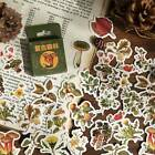 """Vintage Forest"" 45pcs Beautiful Stickers Scrapbooking Craft Decor Stickers"