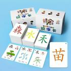 250PCS Learning Chinese Words Language Flash Cards Kids Baby Learning Card Toy