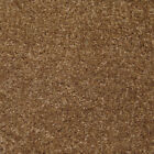 Venice Brown 624 Carpet Lounge Bedroom Stairs Cheap AnyLength x 4m £3.99 Sq m