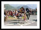 Robert Millar Tour de France Cycling Photo Memorabilia (3621)