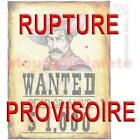 """Décoration murale Affiche """"Wanted"""" Wild West,Farwest,Western,Country,Déguisement"""