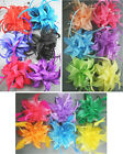 Colourful Fabric FLOWER FASCINATOR Hair Clip Accessory Corsage Pin Colour Choice