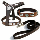 STAFF HARNESS WITH DOG FACE, COLLAR & LEATHER LEAD SET IN 8 COLORS,CHROME FITTED