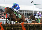 HURRICANE FLY 01 (CHELTENHAM 2013) PHOTO PRINT