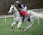 DESERT ORCHID 09 RIDDEN BY COLIN BROWN (HORSE RACING) PHOTO PRINT