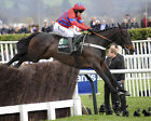 SPRINTER SACRE 21 RIDDEN BY BARRY GERAGHTY (HORSE RACING) PHOTO PRINT