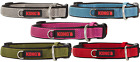 KONG Dog Collars Padded S M L XL BRAND NEW Assorted Colors