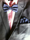Mens Silk Polka Dot Bow Tie Dickie Bow & Pocket Square Hankie Handkerchief Set