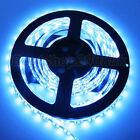 White 5050 3528 SMD 5M LED Strip IP65 Ribbon Tape Roll Room Car Light 12V UK