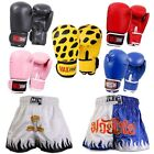 Thai Kick Boxing Shorts Trunks Pro Sparring Gym Fight Training Punch Bag Gloves