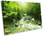 Forest River Woodland Green Landscape Framed Canvas Wall Art Picture Print