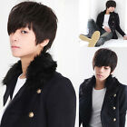 New Fashion Boy Men Wig Short Fluffy Straight Hair Cosplay Costume Full Wigs