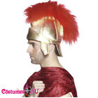Adult Mens Roman Warrior Gladiator Soldiers Helmet Costume Accessory Hat + Crest