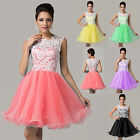 New Formal Short Evening Ball Gown Party Prom Bridesmaid Dress 6 8 10 12 14 16++