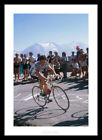 Stephen Roche 1987 Tour de France Cycling Photo Memorabilia (264)