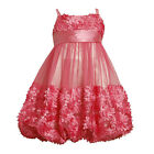Bonnie Jean Girl 10 12  Floral Dress Flower Wedding Pageant Birthday Christmas