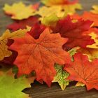 GTI - 100 Pcs Multi Colored Artificial Autumn Maple Leaf Leaves Xmas Decorations