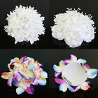 Beautiful Hair Flower Clip Pin Bridal Wedding Prom Party Women Hairwear 3 Colors