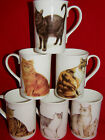 BN Fine Bone China Boxed Cat Mug, Cat Gift, Cat Cup, Pet Gift, Cat Gift Mug