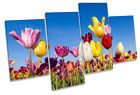 Tulip Floral Flower Field MULTI CANVAS WALL ART Boxed Framed