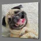 PUG DOG CANVAS WALL ART PICTURE PRINT VARIETY OF SIZES FREE UK P&P