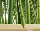 "Photo wall mural no.1 ""PARADISE OF BAMBOO"" 400x280cm"