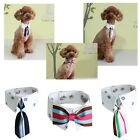 Bonyndog Oxford Dog Neck Tie costumes Pet Puppy Name Tag Accessory, Tracking No.