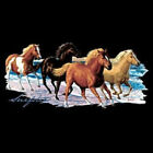 Horses Surfsters T-Shirt All Sizes & Colors New