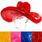 Adults Inflatable Cowboy Hat Assorted Colours Western American Novelty