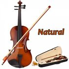 4 4 Acoustic Violin with Case Bow Rosin for Violin Beginner
