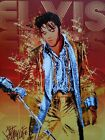 Elvis Presley Very Rare Picture Canvas print quality home decor