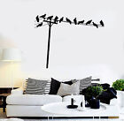 Vinyl Wall Decal Birds on Telephone Wires House Interior Stickers (ig4118)