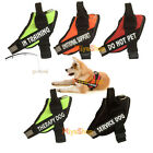 Service Dog Vest Harness Nylon Reflective Walking Training Removable Patches