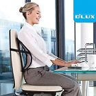 DLUX Cool Cushion Vent Mesh Back Lumbar Support for Car Seat,Chairs,Office/Home