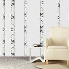 Birch Tree Wall Decal Aspen Trunk Wallpaper Vinyl Art Remova