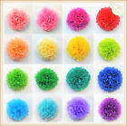 Tissue Paper Pom Poms Honeycomb Balls Fans Wedding Party Baby Living Room Decor