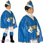 Boys Blue Prince Charming Medieval Middle Ages Kids Fancy Dress Costume Book Day