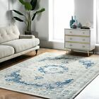nuLOOM Traditional Oriental Vintage Persian Style Area Rug in Blue and White