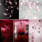 Solar Powered Warm White 20M 200LED Copper Wire Outdoor String Fairy Light BG